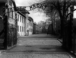 Medical Review – Auschwitz: Medicine Behind the Barbed Wire